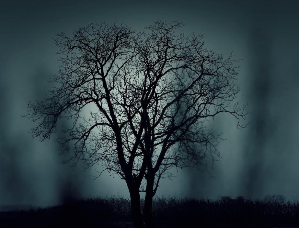 Halloween-puu-siluetti-Pixabay
